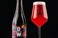 BrewDog goes wild over sour beer